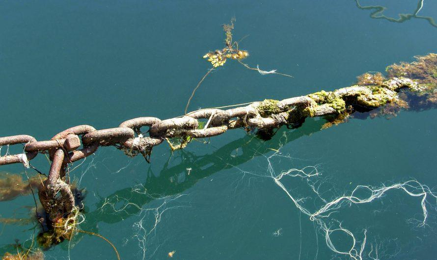Ocean's Chain