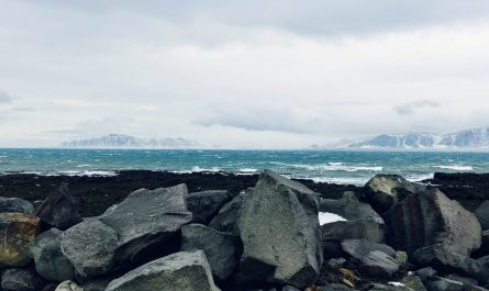 Reykjavik's Winter Shore