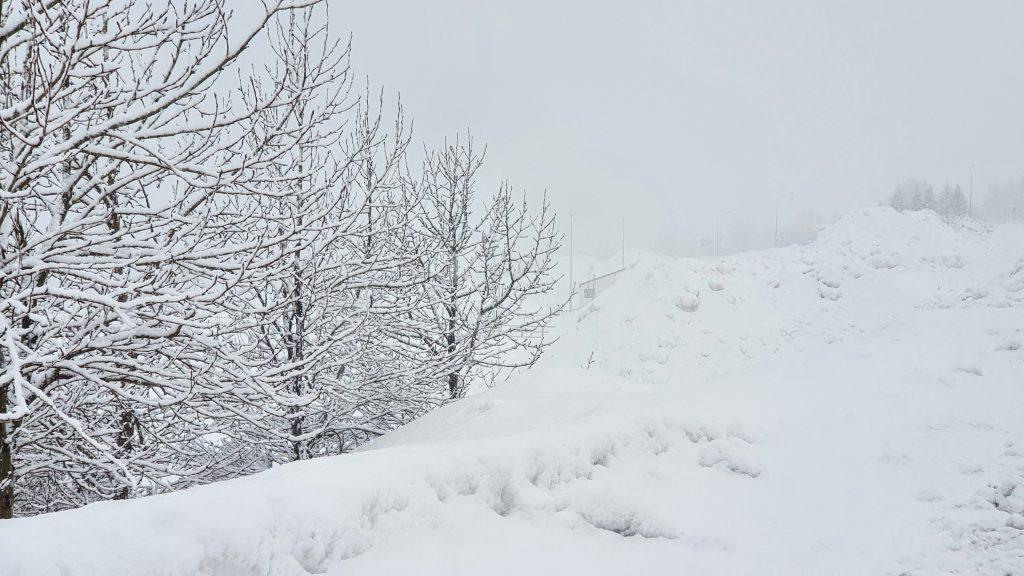 Snow Falling Isafjordur Town