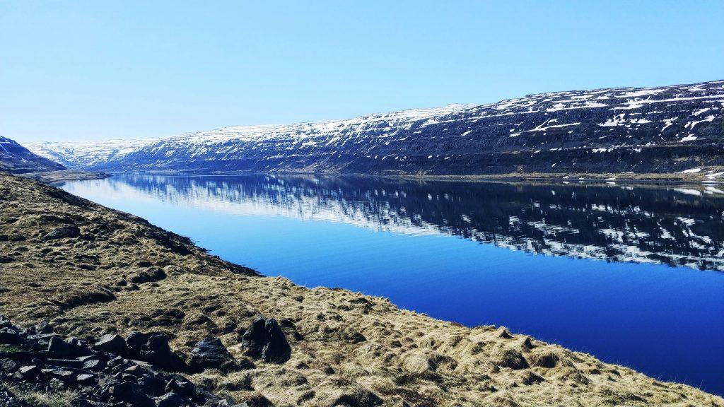 Skate Fjord In Springtime