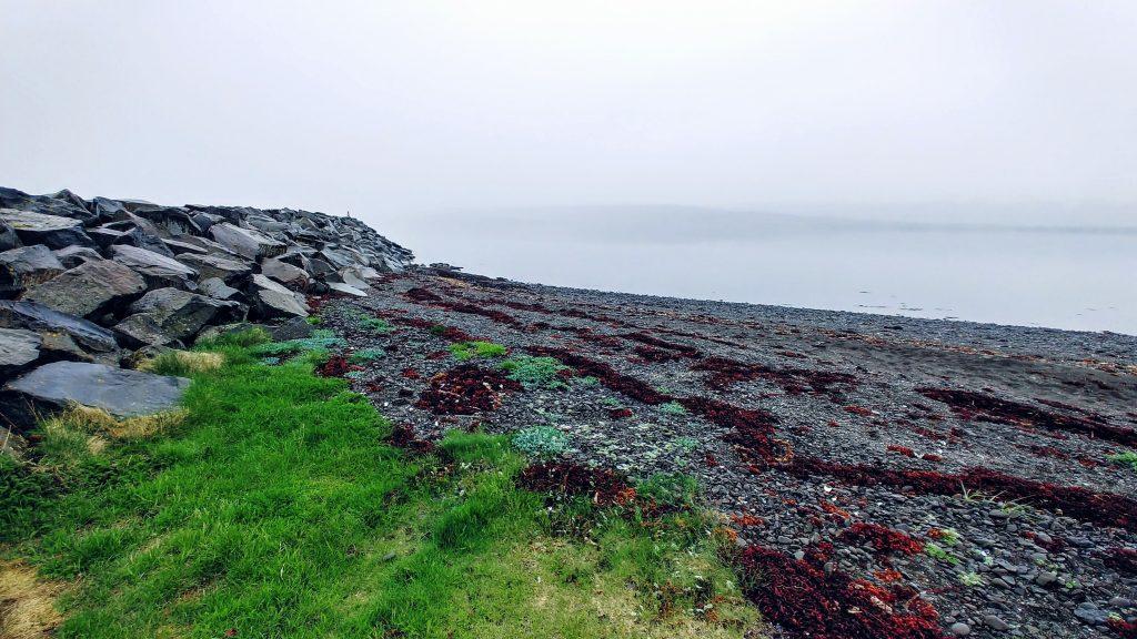 Shore In Isafjörður Fjord