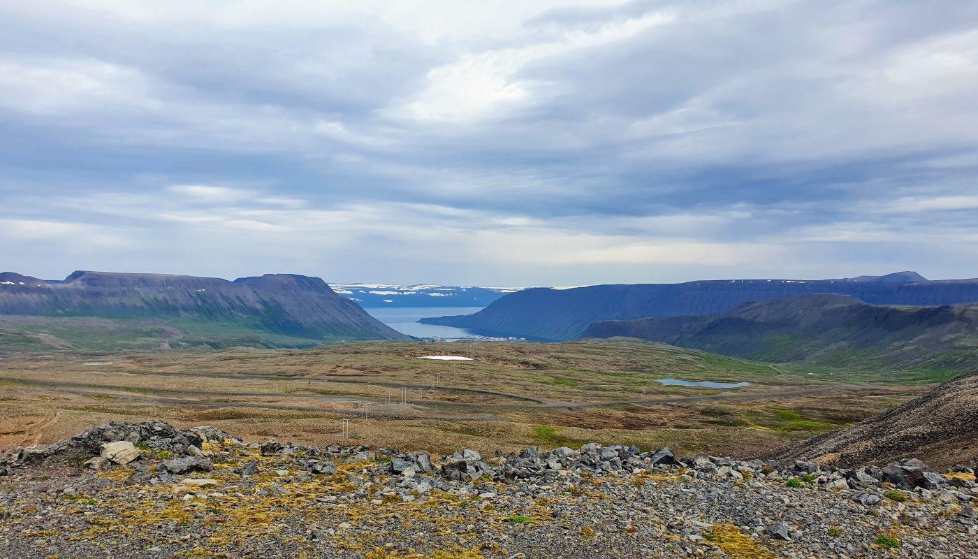 View of Skutulsfjörður and the heath