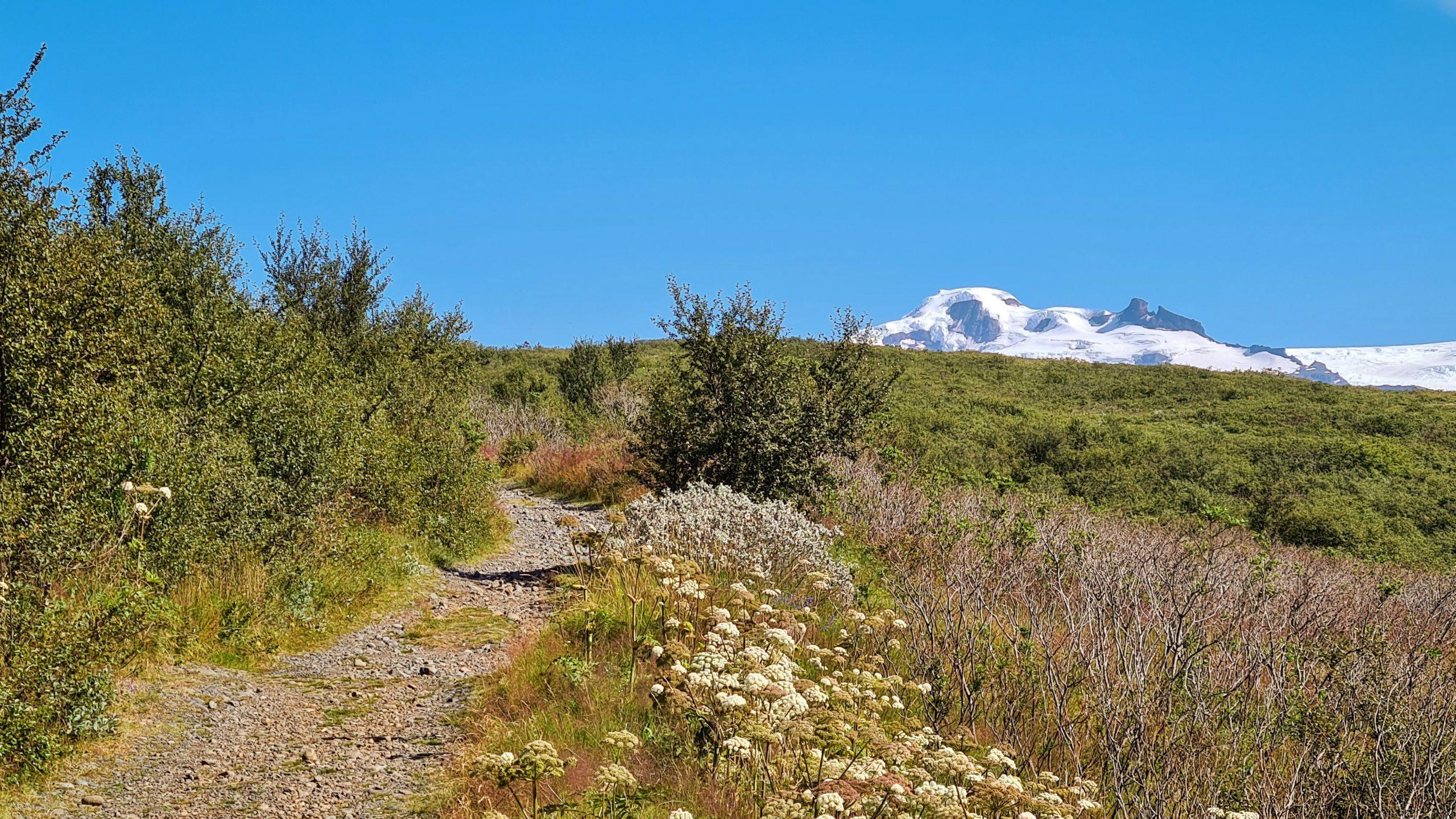 Hiking Trail in Skaftafell