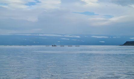 Fish Farming in Isafjordur Bay