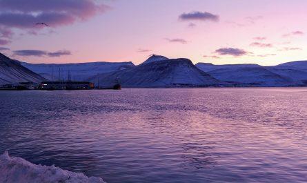 Isafjordur Harbour Afternoon