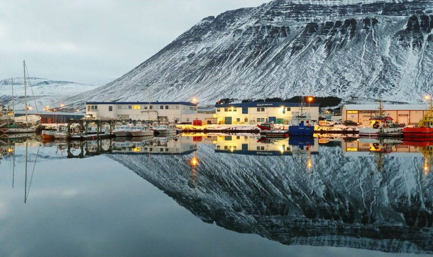 Harbor Stillness Reflection