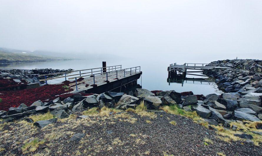 Fog, Stillness And All The Shades Of Gray